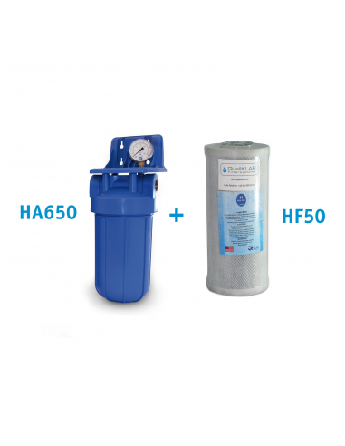 Set Hauswasserfilter BigBlue mit Aktivkohlefilter HF50